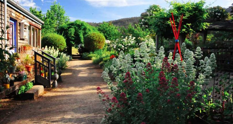 Tips to make your garden in Zimbabwe